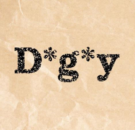 dgy - D*g*y(ディージーワイ)福袋2019中身ネタバレと口コミ評価や予約方法は?