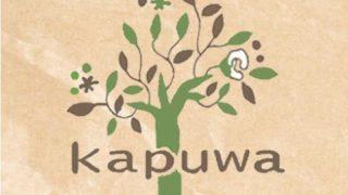 kapuwa 320x180 - リムランド福袋2019中身ネタバレと口コミ評価や予約方法は?