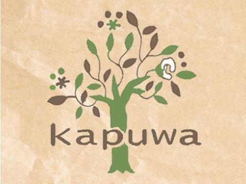 kapuwa 480x360 - kapuwa(カプワ)福袋2019中身ネタバレと口コミ評価や予約方法は?