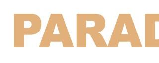 logo pp 320x128 - BABYDOLL【ベビードール】福袋2020ネタバレと口コミや予約方法は?